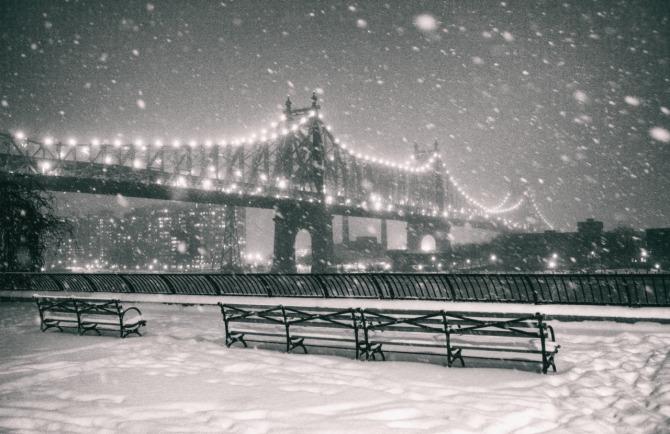 NY Through The Lens