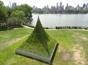 LivingPyramid