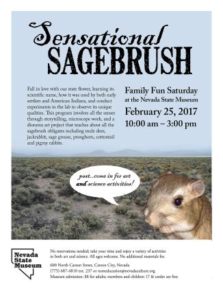 nsm_sensational_sagebrush