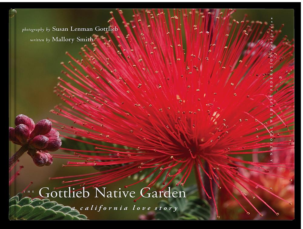 The Gottlieb Native Garden